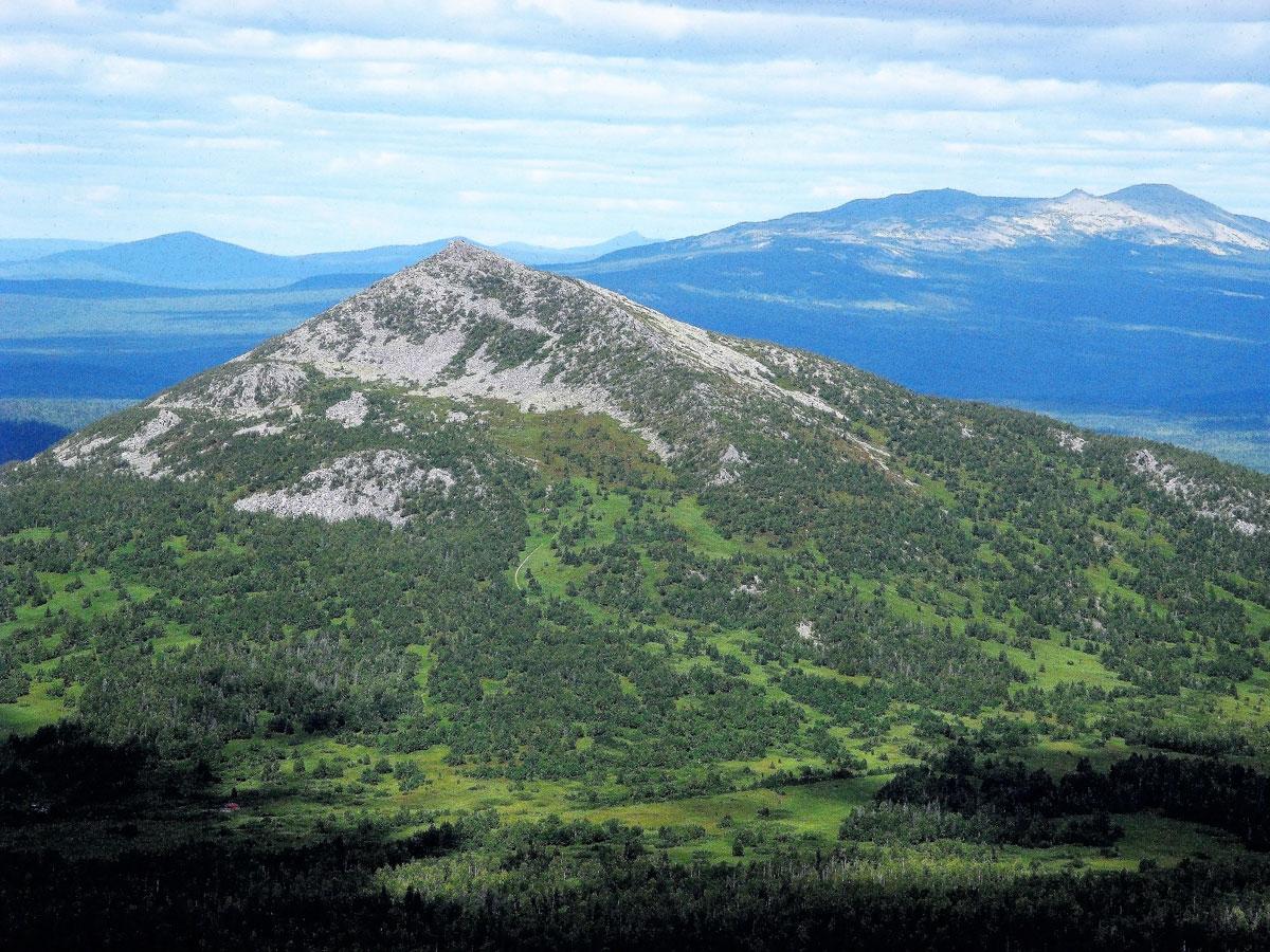 11 января – День заповедников и национальных парков !