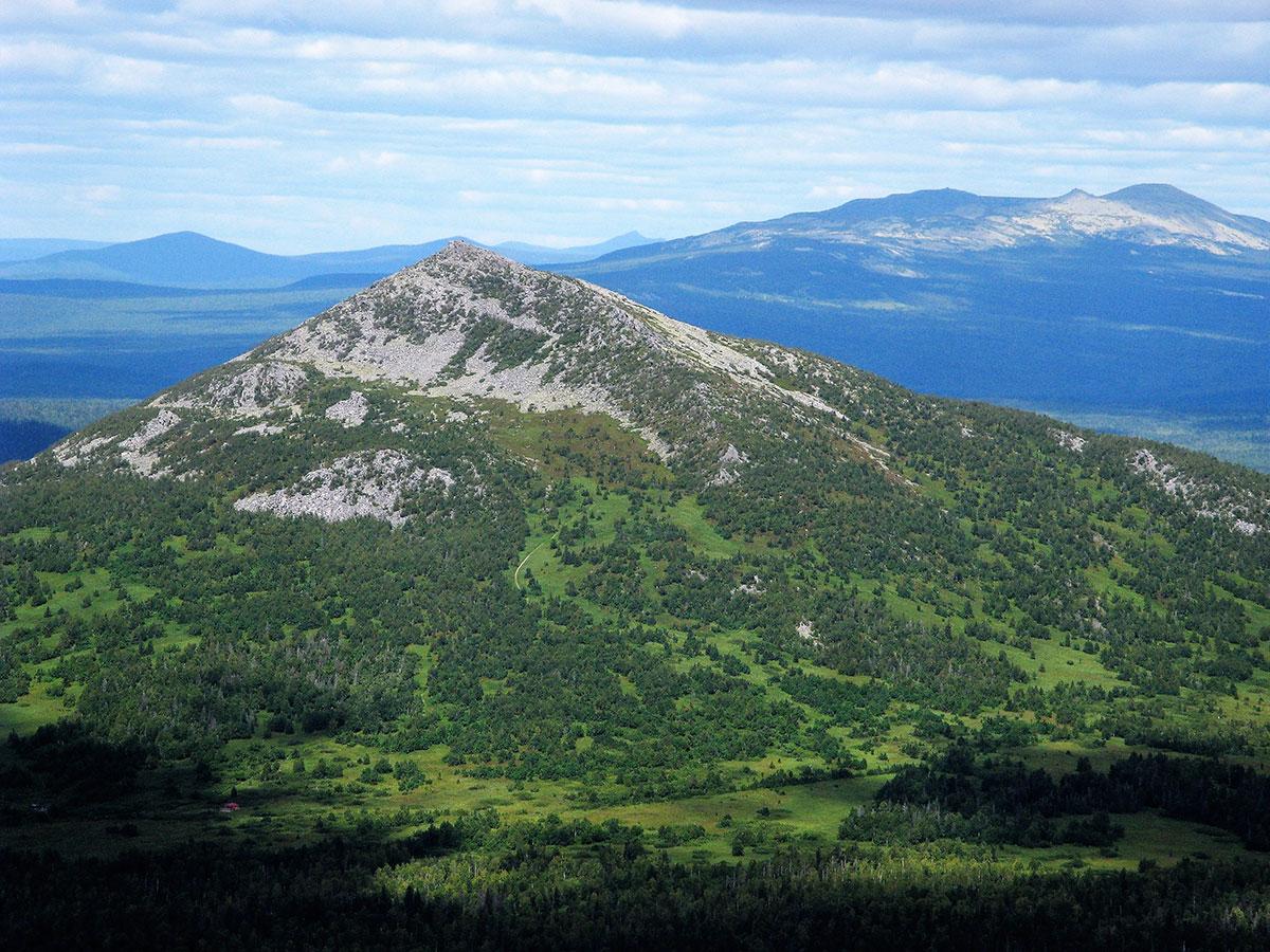 11 января  отмечается день заповедников и национальных парков