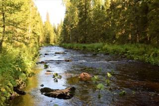 Река Коростелёвка, автор Я Кутузов