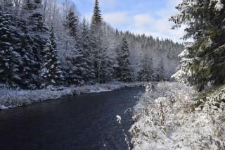 Река Бол. Басег в ноябре, автор Я Кутузов