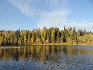Река Усьва в сентябре. Автор - Ульянова Елена