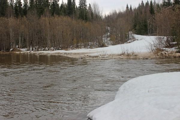 Река Большой Басег Е. Ульянова