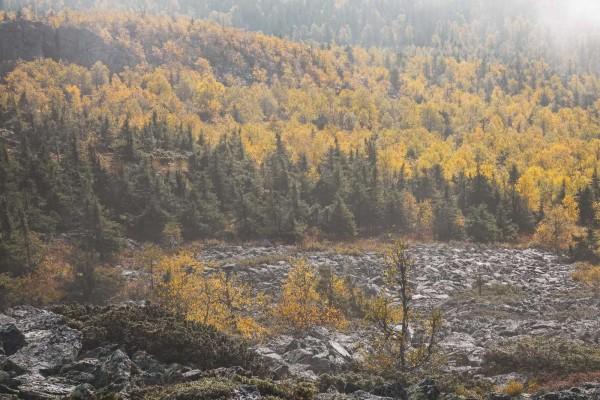 Осень в заповеднике. Автор Лев Арамилев